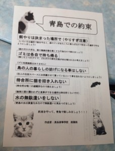 青島の注意点