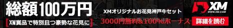 XM通常宣伝バナー